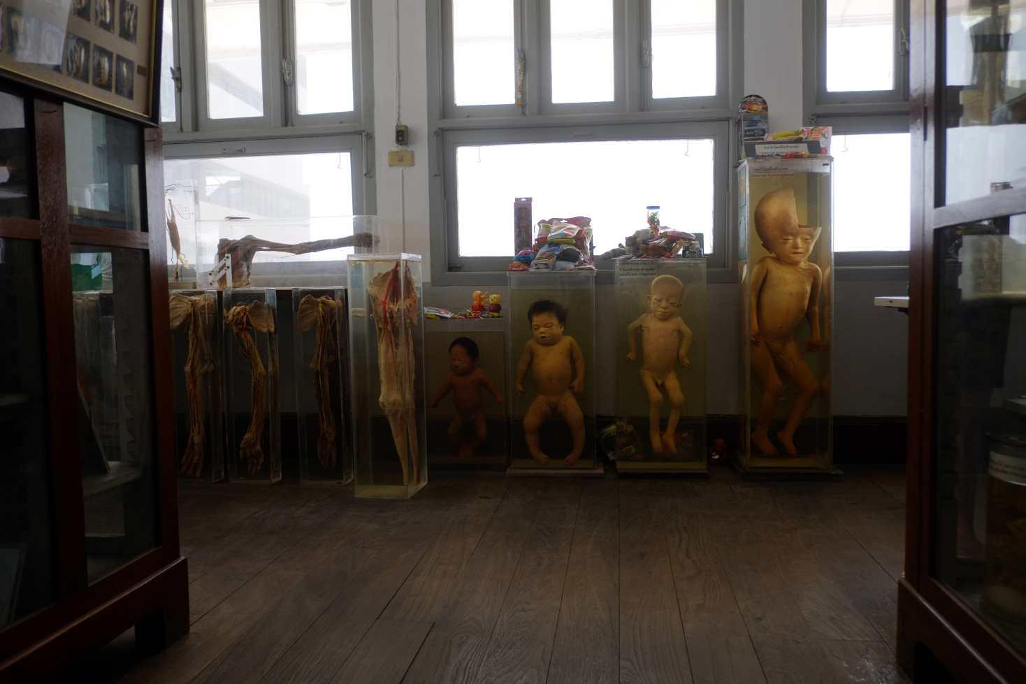 """Museum of Death"" Bangkok, Thailand. 2015"