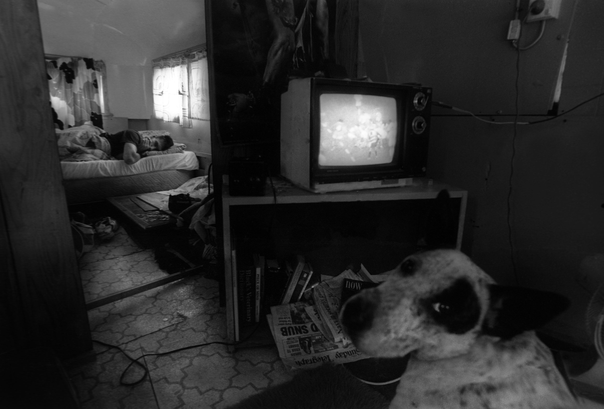 'The morning after'. For many shearers the reward for a weeks physically brutal labour is, a protracted session with fellow shearers at the local pub. Outback NSW, Australia. 1996