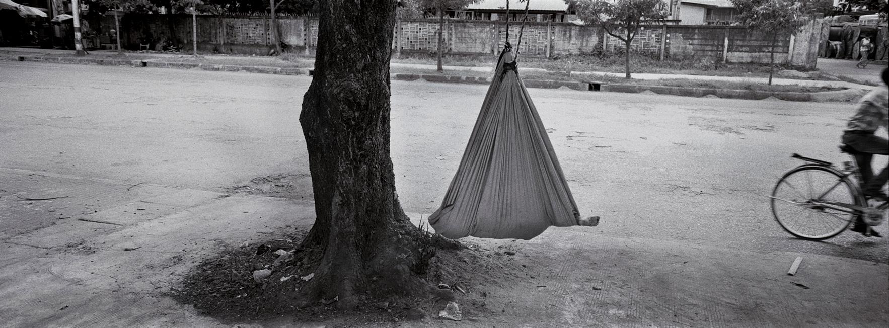 """""""Baby Tree."""" Rangoon, Burma. 2014"""