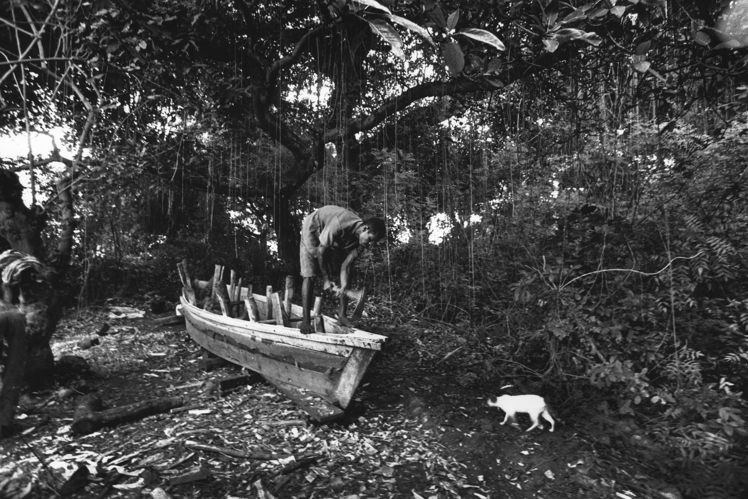 Dhow Boat Maker. In the mangroves, East coast Mombasa, Kenya. 1999