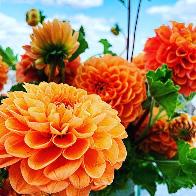 #instaflower #flowerstagram #flowers #floraldesign #flowerporn #flowerlove #nycfloraldesigner #floraldesigner #nycevents #floralart #joshuakdesign