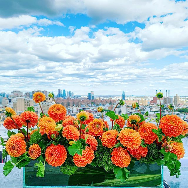Orange dahlia's for the win! @thestandard @gocriteo . . .  #instaflower #flowerstagram #flowers #floraldesign #flowerporn #flowerlove #nycfloraldesigner #floraldesigner #nycevents #floralart #joshuakdesign