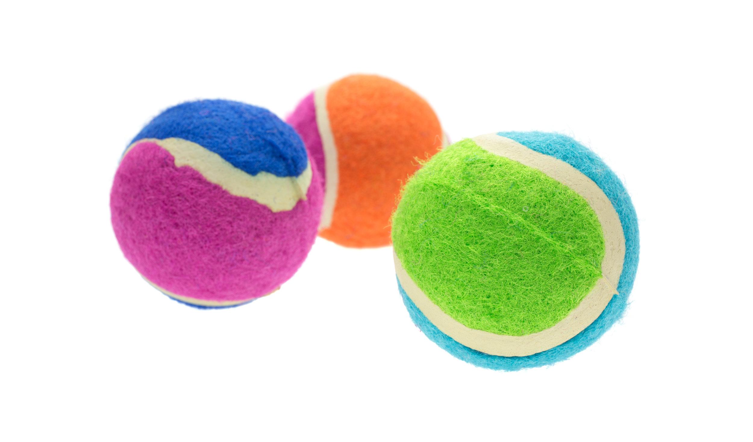 dog ball toys.jpg