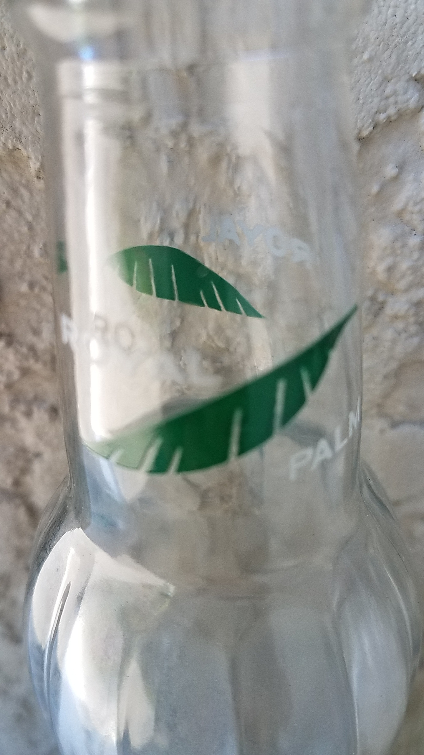 Palm branches on bottle neck