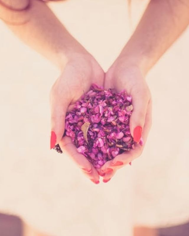 Rose hip or rose petals are just so romantic and loving and gorgeous in colour. ⠀⠀⠀⠀⠀⠀⠀⠀⠀ Both are a brilliant source of Vitamin C – supporting your skin cells against free radicals , great in tea blends and calms the mind and aching heart, adding to salads as texture and flavour can support a sluggish liver. ⠀⠀⠀⠀⠀⠀⠀⠀⠀ ⠀⠀⠀⠀⠀⠀⠀⠀⠀ Have you added this rose delight to any of your cooking meals or teas? ⠀⠀⠀⠀⠀⠀⠀⠀⠀ ⠀⠀⠀⠀⠀⠀⠀⠀⠀ ⠀⠀⠀⠀⠀⠀⠀⠀⠀ #rosehip #rosepetals #vitaminc  #nutrition #foodispower #foodishealing #naomithenutritionist #holistichealth #functionalmedicinetesting #wholesometips #unley #ichoosesa #authenticnutrition #optimalnutrition #selfcare #iridology #wellbeing #mindbodysoul #healingfoods #eatmoregreens #eatrealfood #wholefoods #happyvibes #wholism #planoly