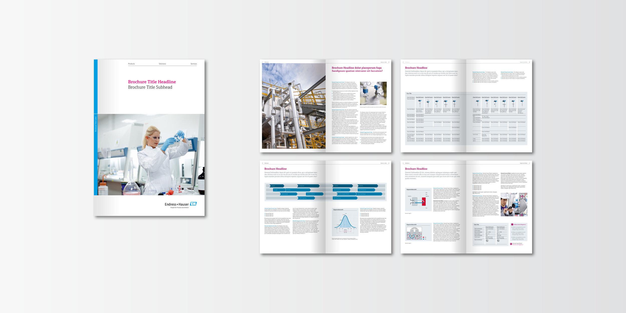 Endress+Hauser Corporate Design 05.jpg