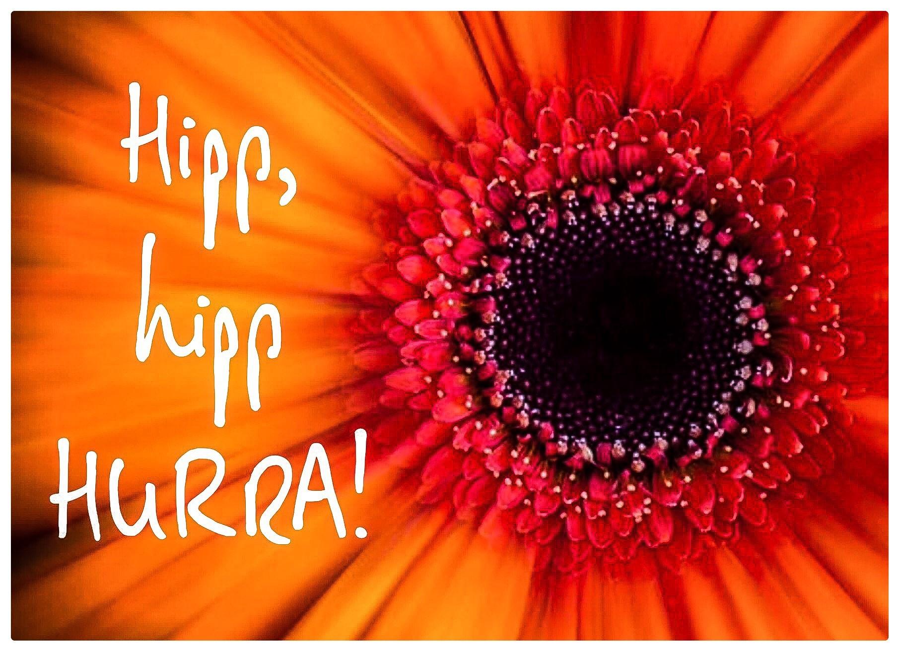 Hipp hipp hurra 20-kortpakke (002).jpg