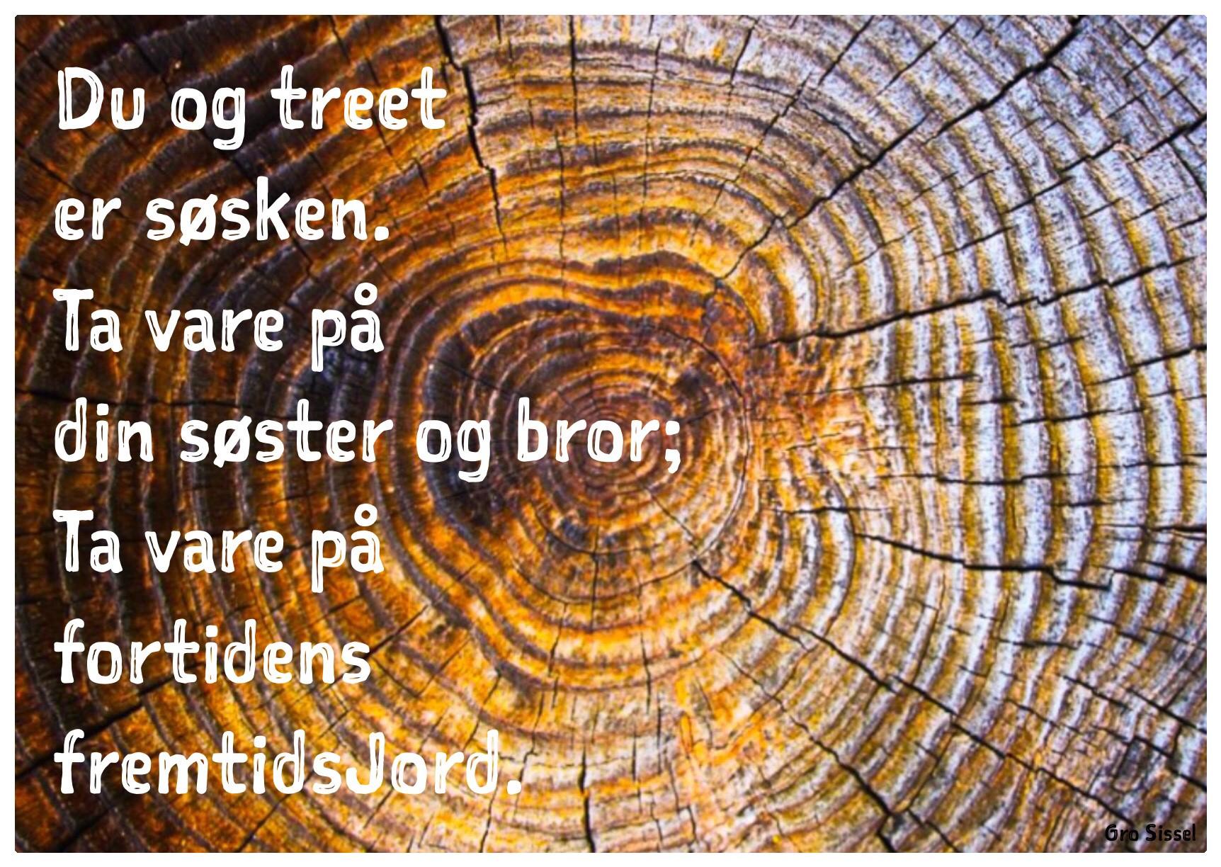 Du og treet.._.jpg