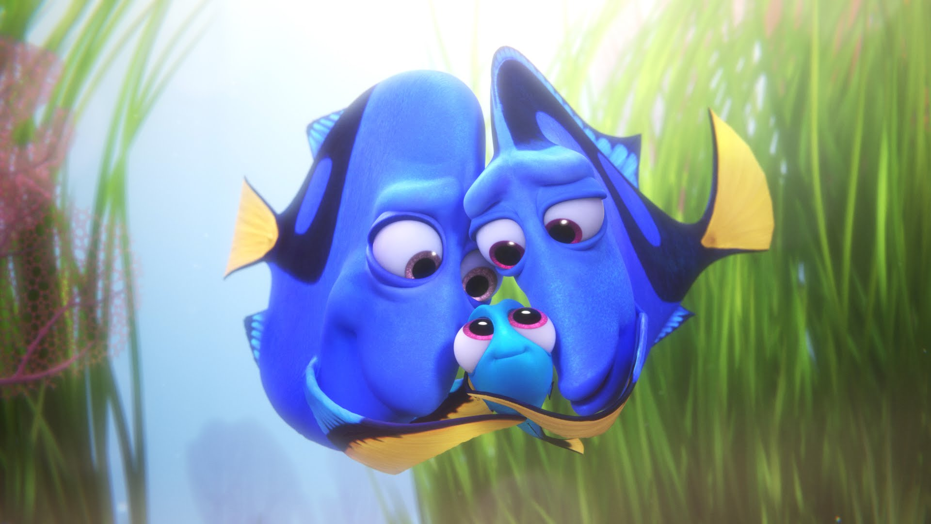 Finding Dory - Amanda welcomes back her sister Faythe to discuss the latest Pixar animated movie, Finding Dory. Amanda offends Faythe's childhood, Faythe is very protective of Treasure and they both cry and hold hands…again.