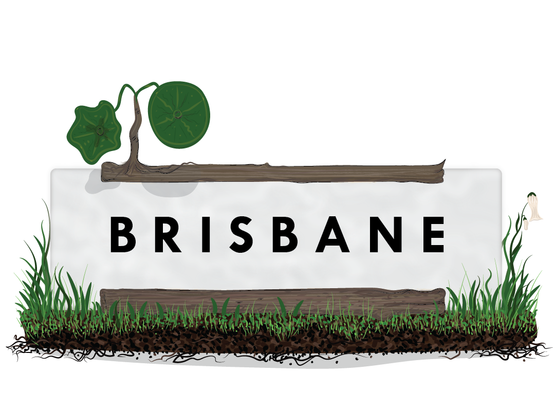 BRISBANE GRASS Landscape-01.png