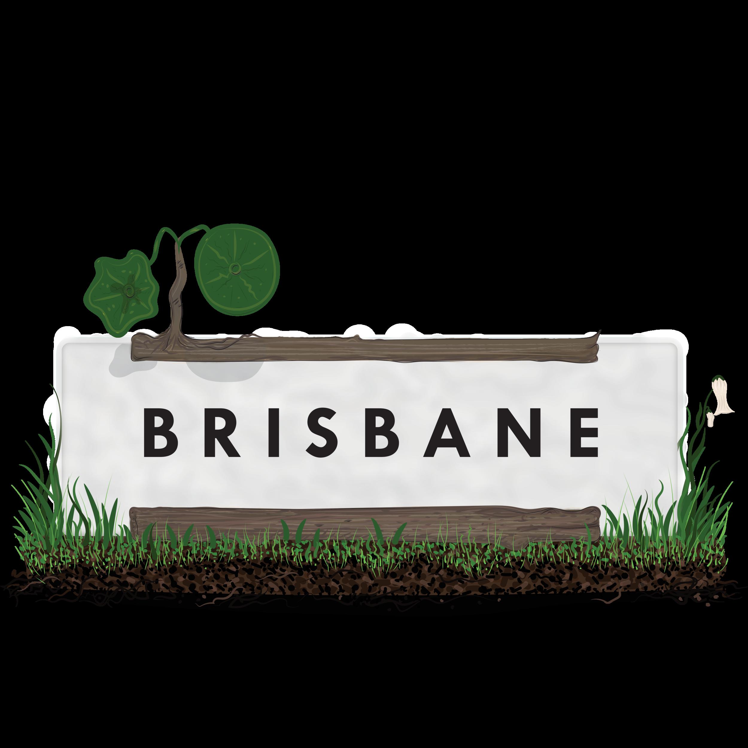 BRISBANE GRASS Landscape.png