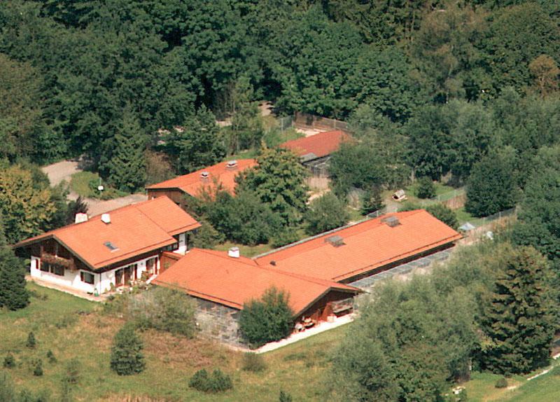 Die Gebäude des neuen Tierheims mit Wohnhaus und dem bestehenden alten Teil aus der Vogelperspektive