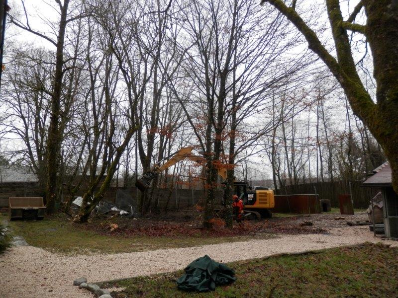 Baubeginn Hundehaus 30.03.15