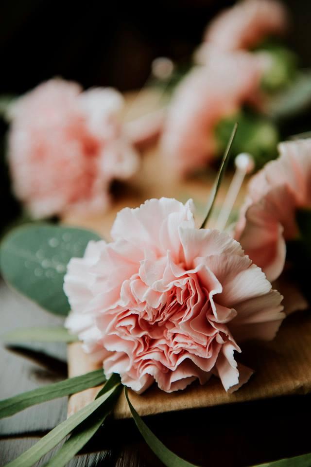 Pink Carnation Buttonholes.jpg