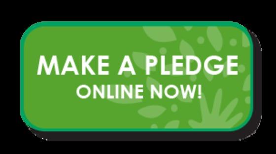make a pledge.jpg