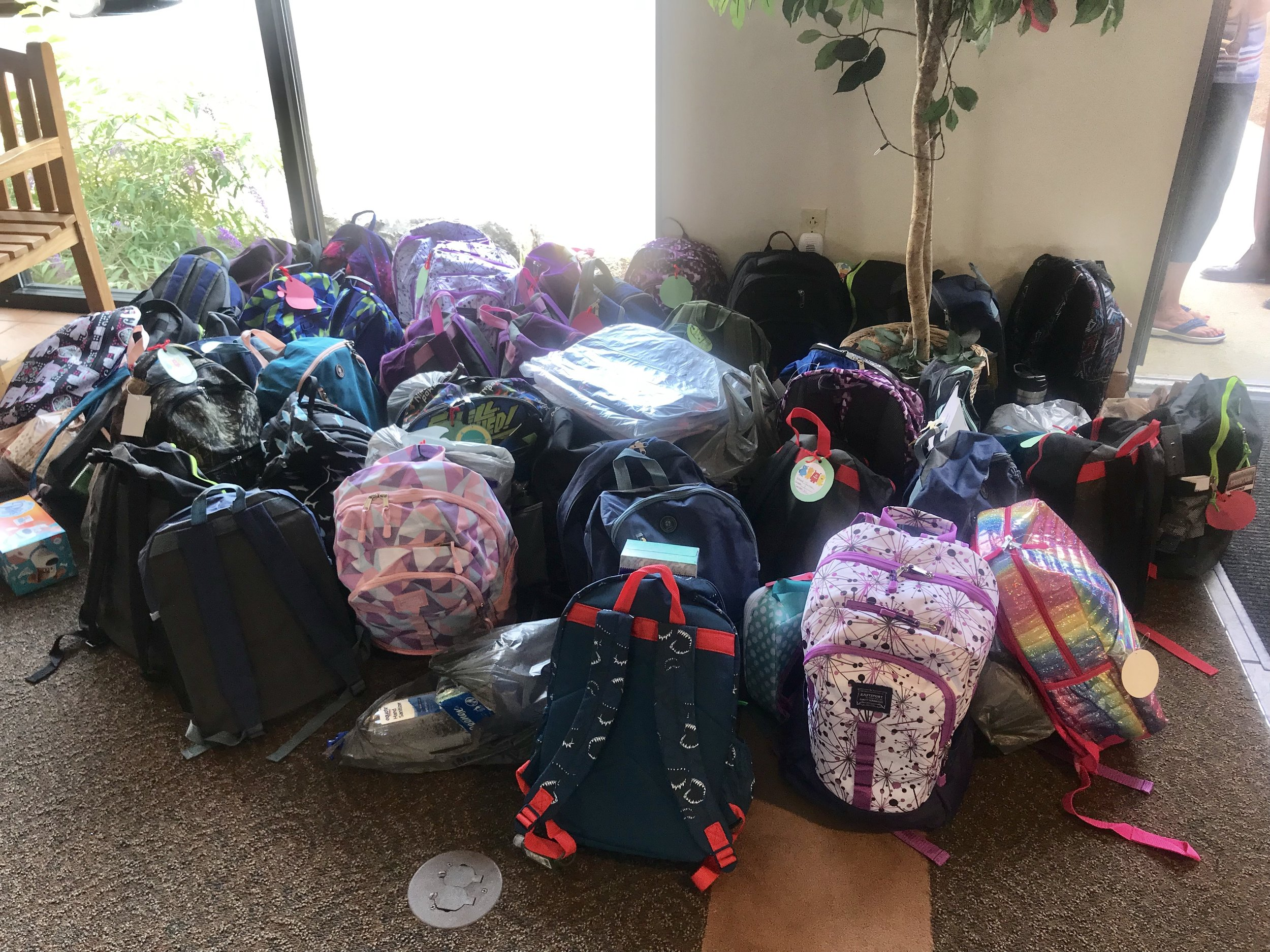 backpack drive2 2019.jpg