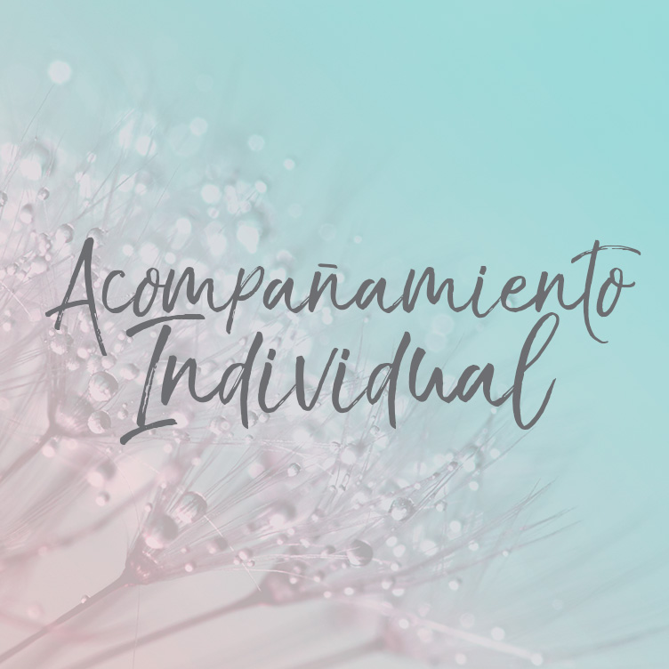 acompanamiento_individual.jpg