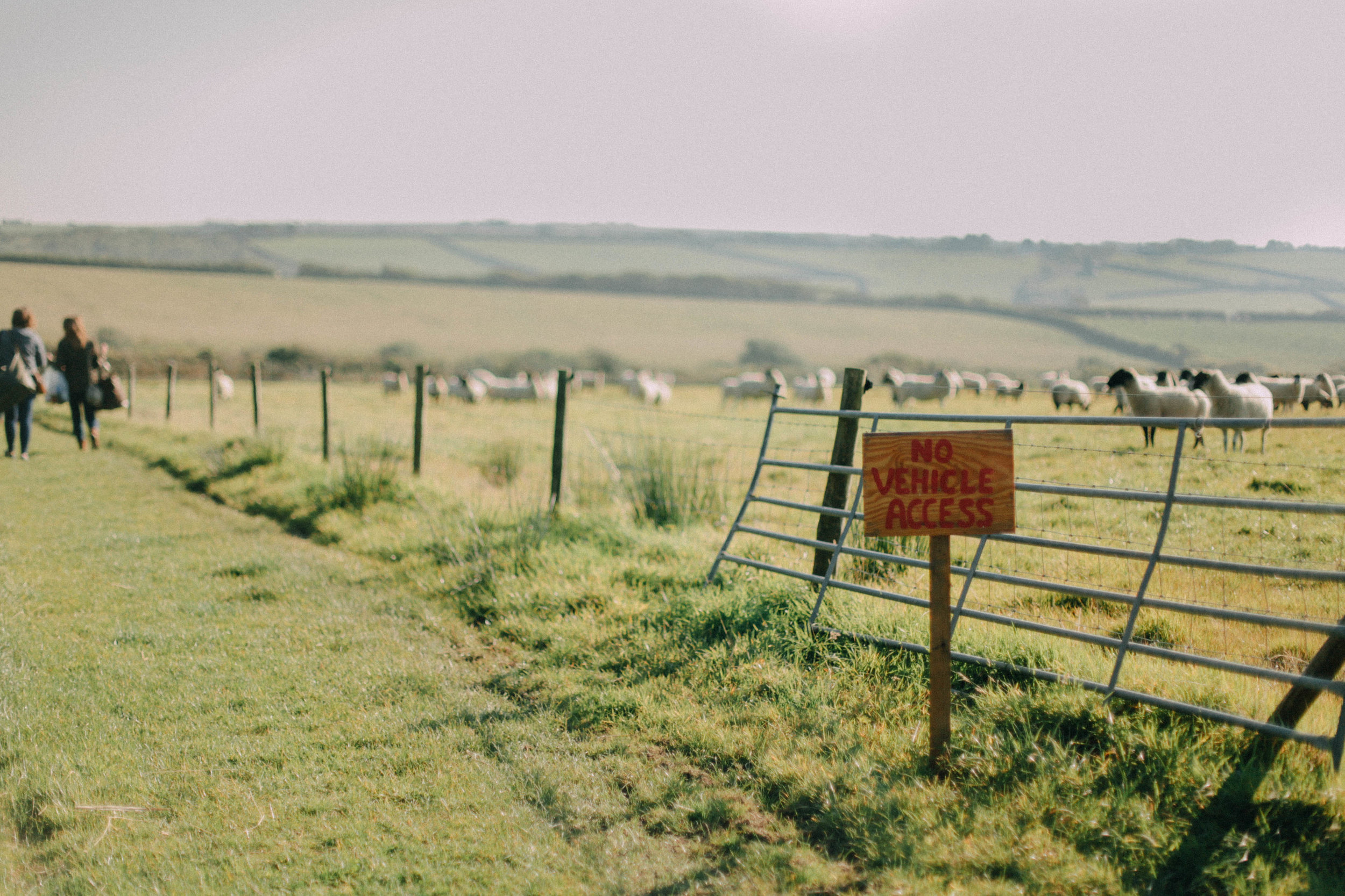 Koa Tree Camp // Devon, UK - Eco-Friendly Travel by The Foraged Life