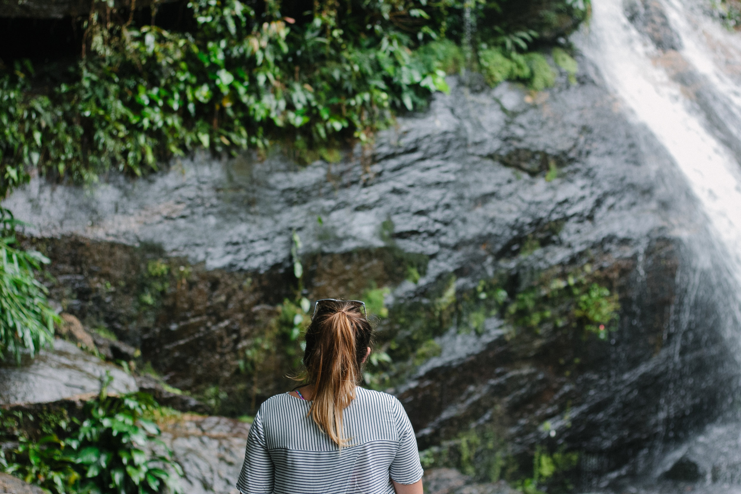 Exploring Tijuca Forest | An eco-friendly guide to Rio de Janeiro, Brazil | Eco-friendly travel by The Foraged Life