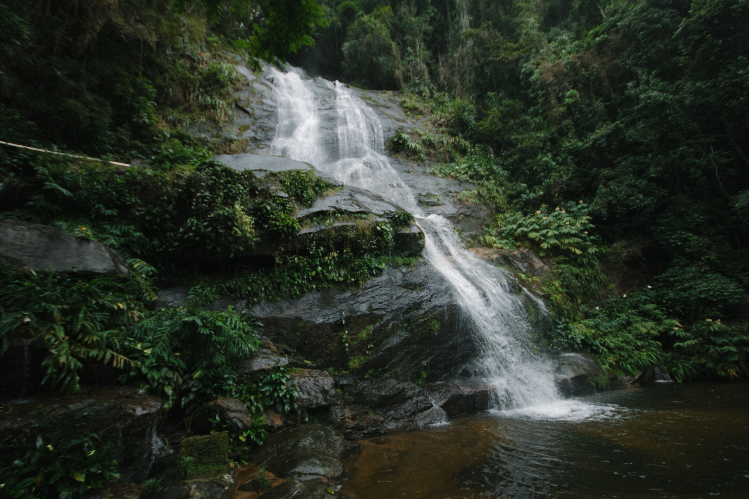 Tijuca Forest | An eco-friendly guide to Rio de Janeiro, Brazil | Eco-friendly travel by The Foraged Life
