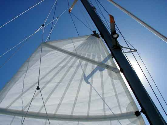 Mainsailtop batten.jpg