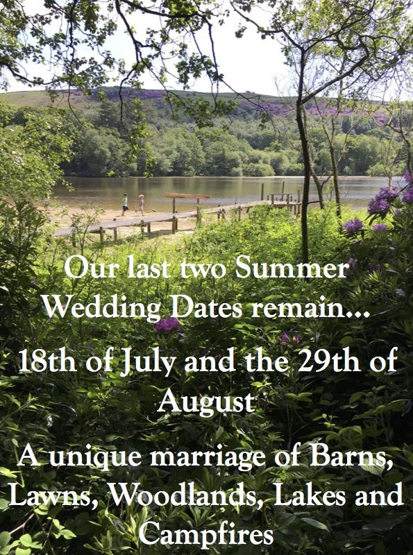 Summer Wedding Last Dates.jpg