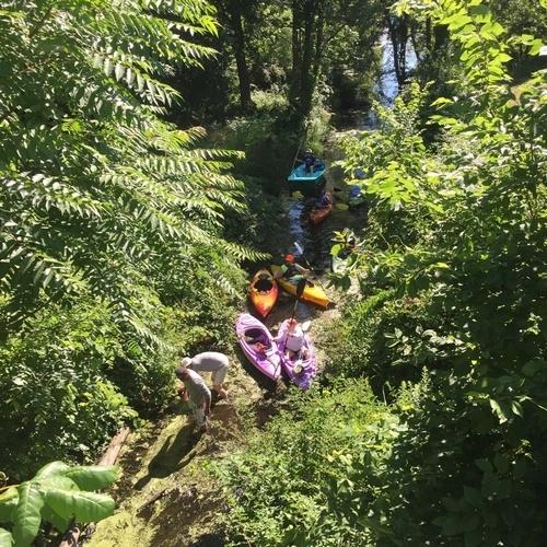 Photo provided by Geoffrey Howard. Kayakers working in the Wawayanda Creek to clear debris.