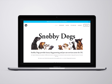 snobby_dogs_website.jpg