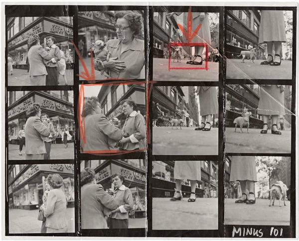 """Contact sheet of Elliott Erwitt's famous """"Chihuahua, New York"""" (the final print is on display at Neomodern)."""