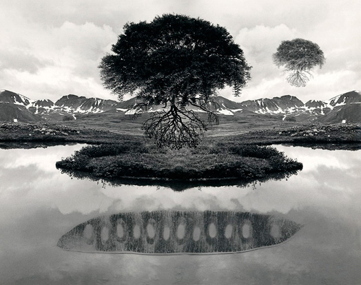 """Floating Tree"" 1969 by Jerry Uelsmann"