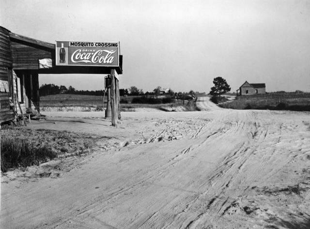 Mosquito Crossing, Georgia, 1939 (Marion Post Wolcott)