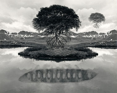 """Jerry Uelsmann, """"Floating Tree"""" 1969"""
