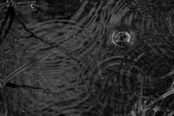 Screen Shot 2018-11-09 at 4.14.03 PM.png