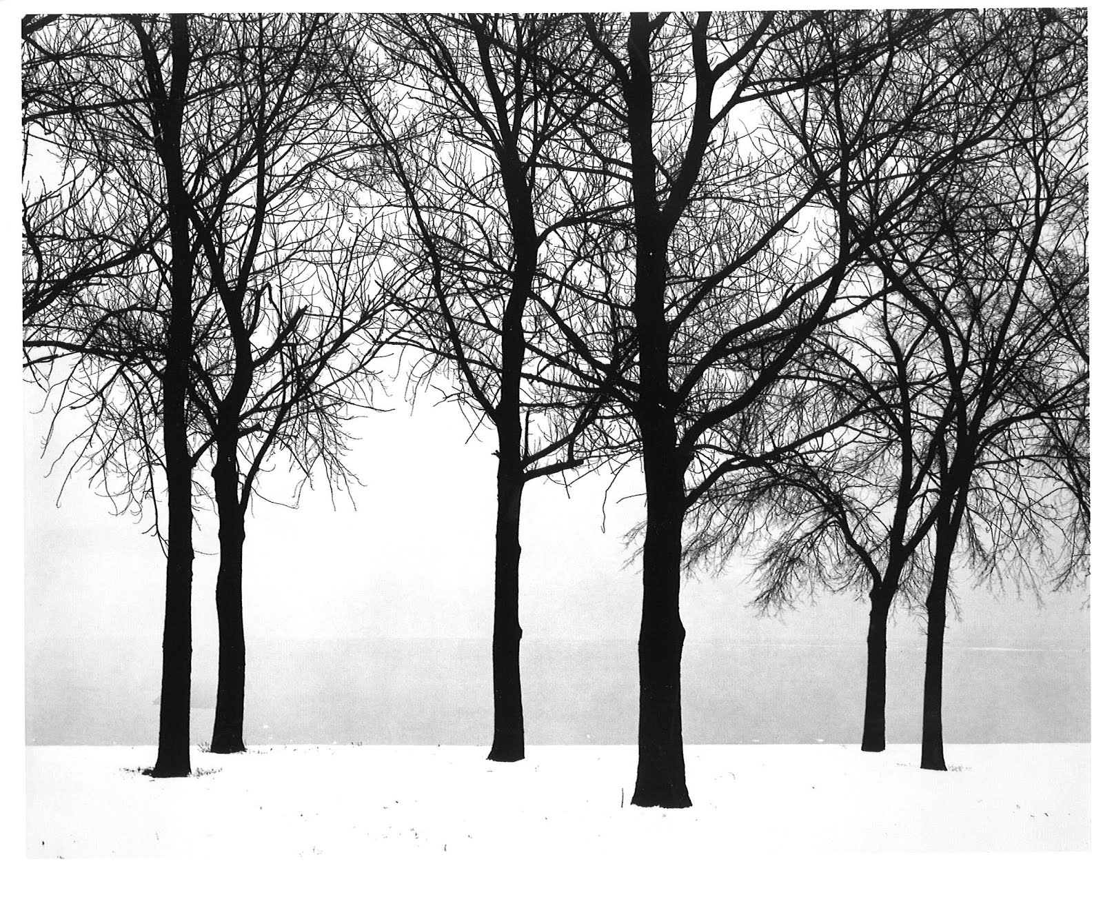 Chicago, 1952 by Harry Callahan