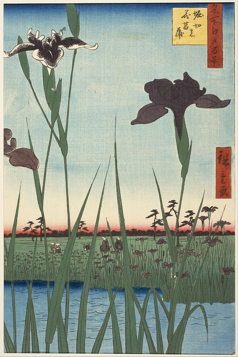 Horikiri Iris Garden (Horikiri no hanashōbu), from  One Hundred Famous Views of Edo   https://en.wikipedia.org/wiki/Hiroshige#/media/File:Utagawa_Hiroshige_I,_published_by_Uoya_Eikichi_-_Horikiri_Iris_Garden_(Horikiri_no_hanashōbu),_from_the_series_One_Hundred_Famous_Views_of_Edo_(Meish..._-_Google_Art_Project.jpg