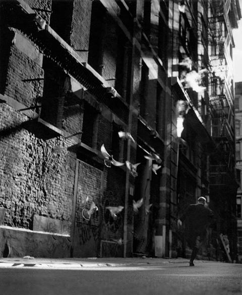_Alley,+1998.jpg