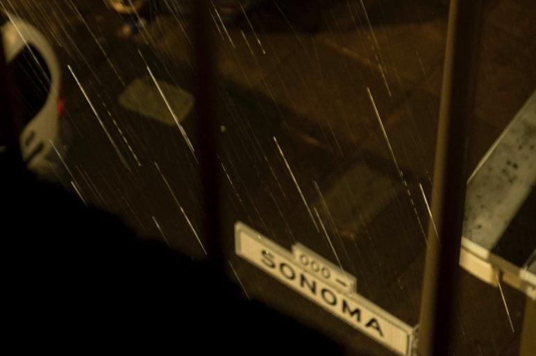 "Rubin ""Sonoma Street"" (2019)"