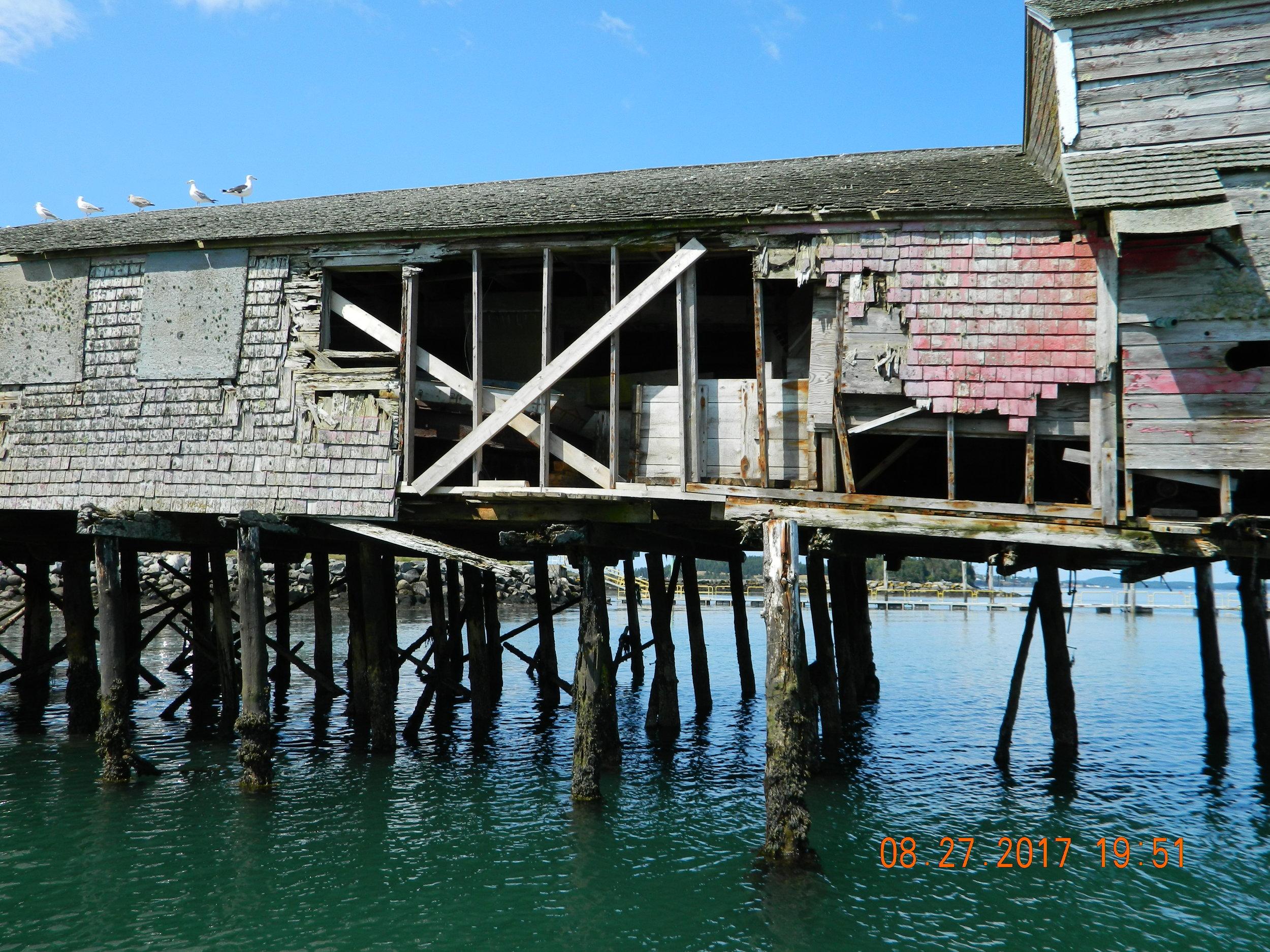 brining shed 2.jpg