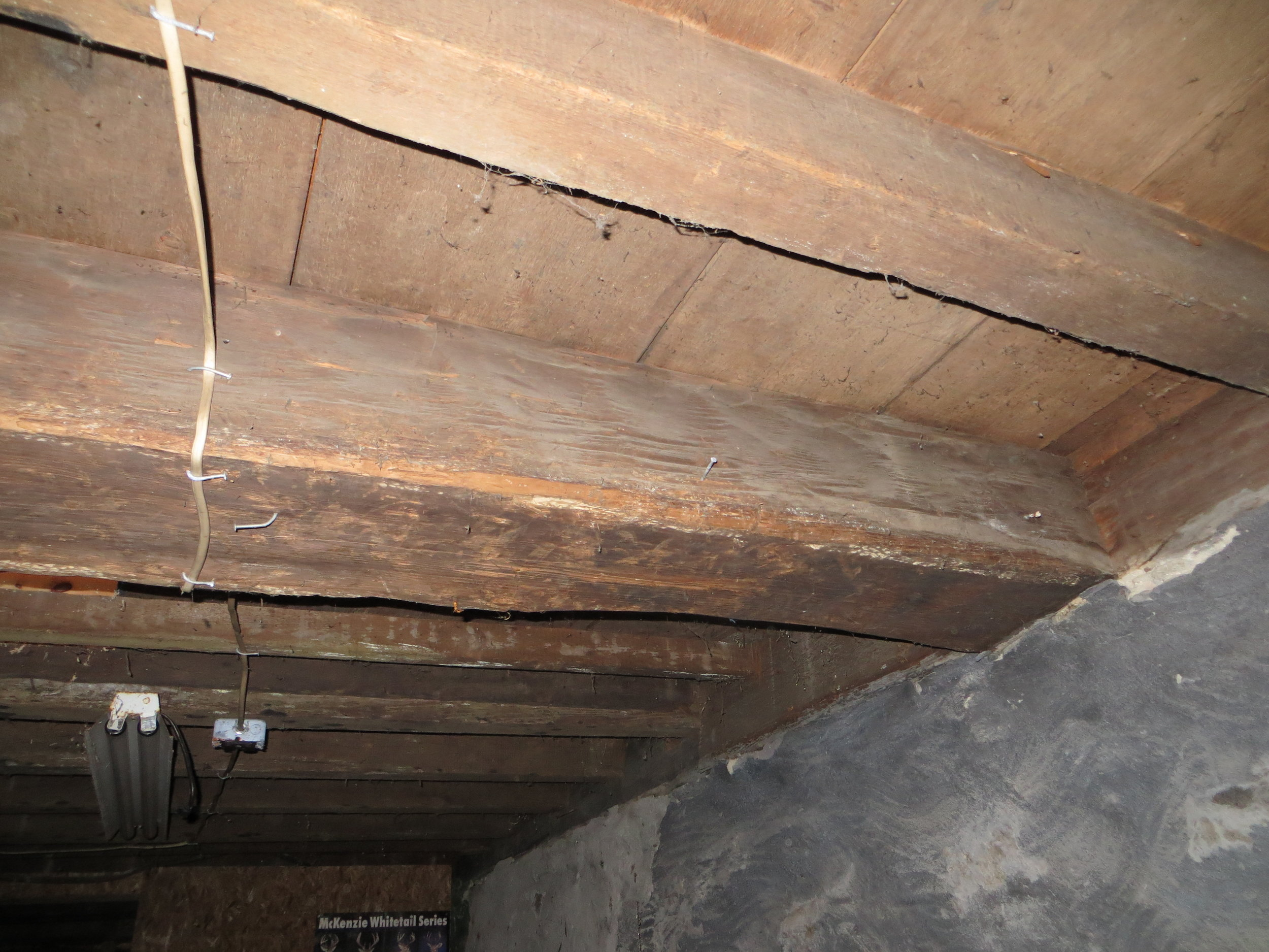 Buck cellar 12.JPG