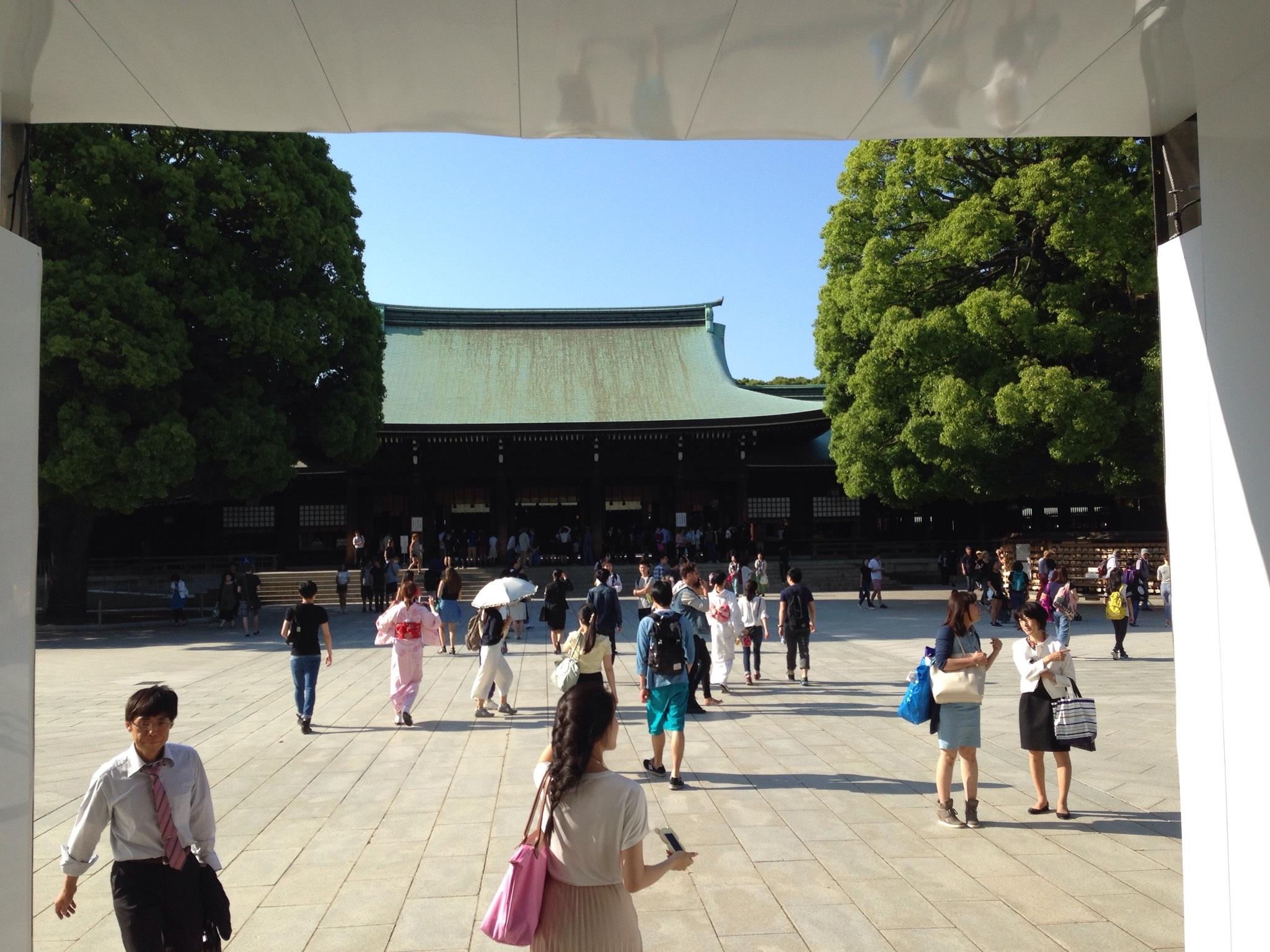 Me at Meiji Jingu, a Shinto shrine in Harajuku in June, 2016.