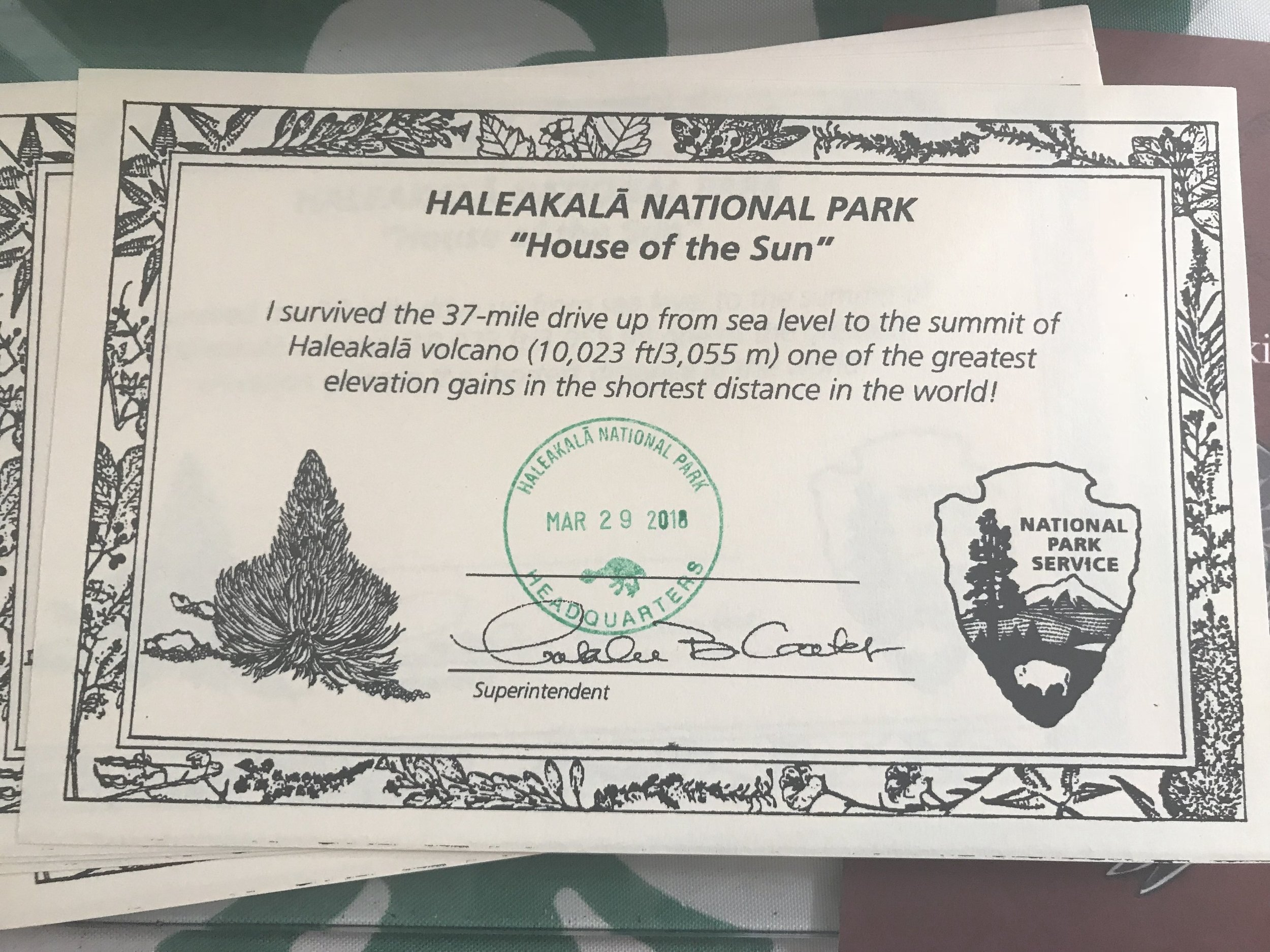 Certificate for those who went up to the summit of Haleakala at the visitor's center.