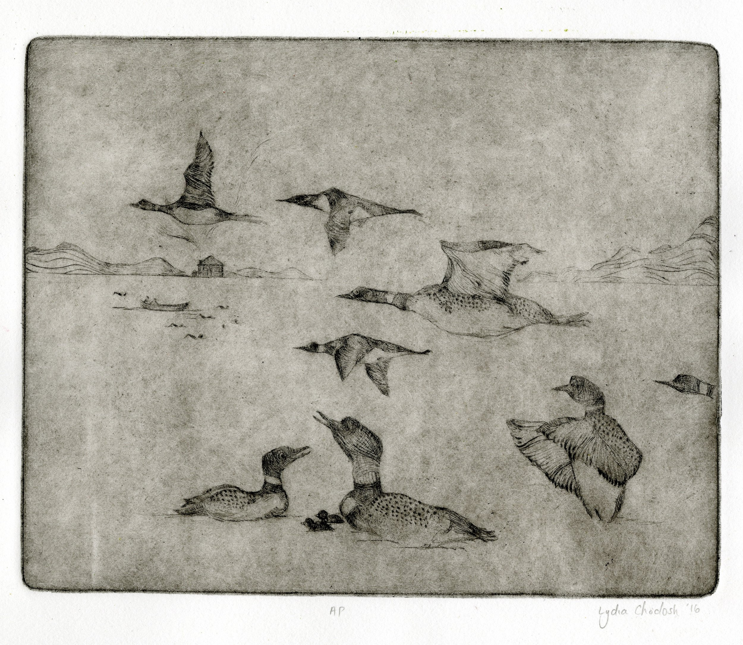 birds003 copy.jpg