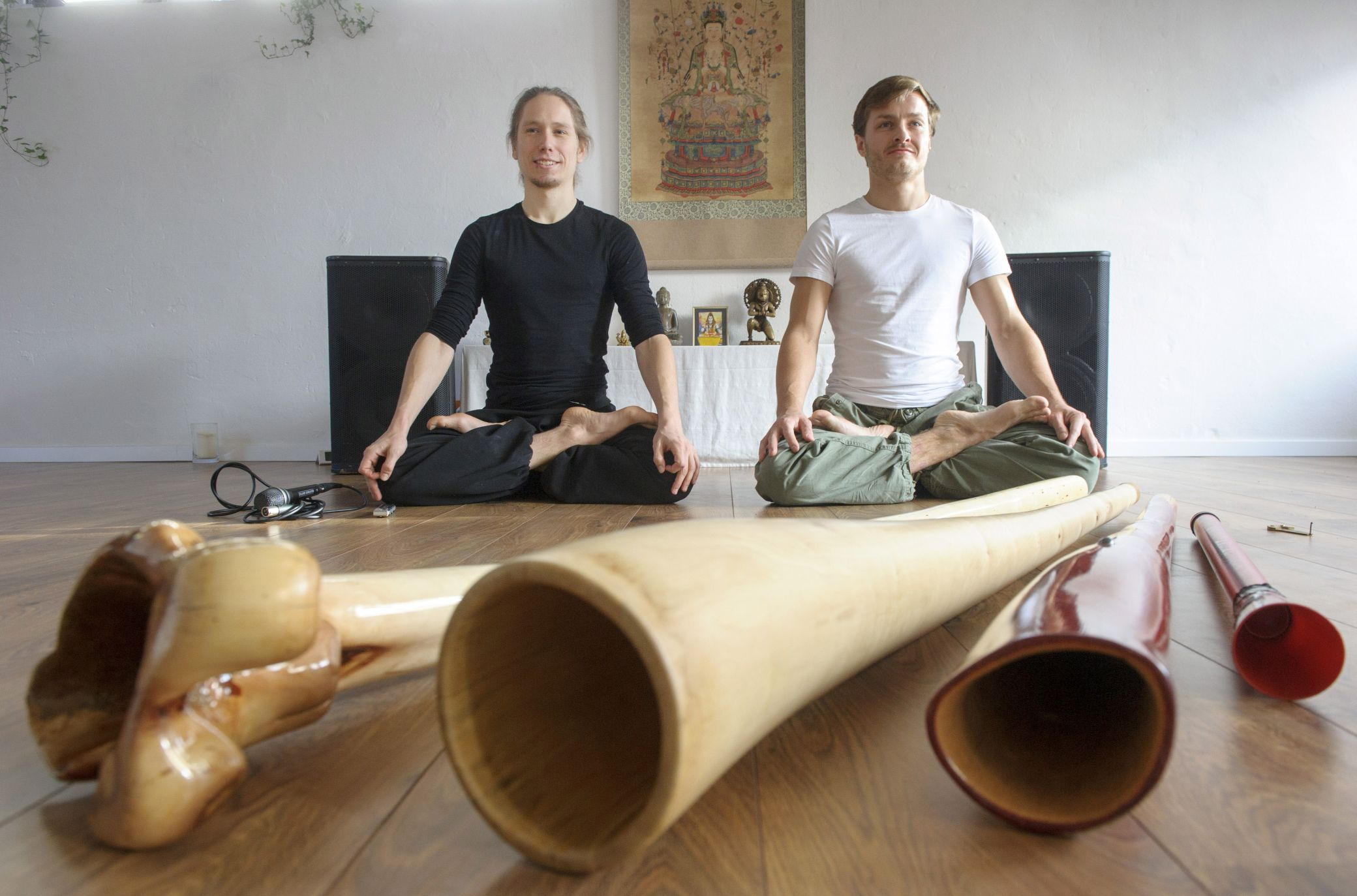 Aerodice im Yogastudio im Wasserviertel.jpg