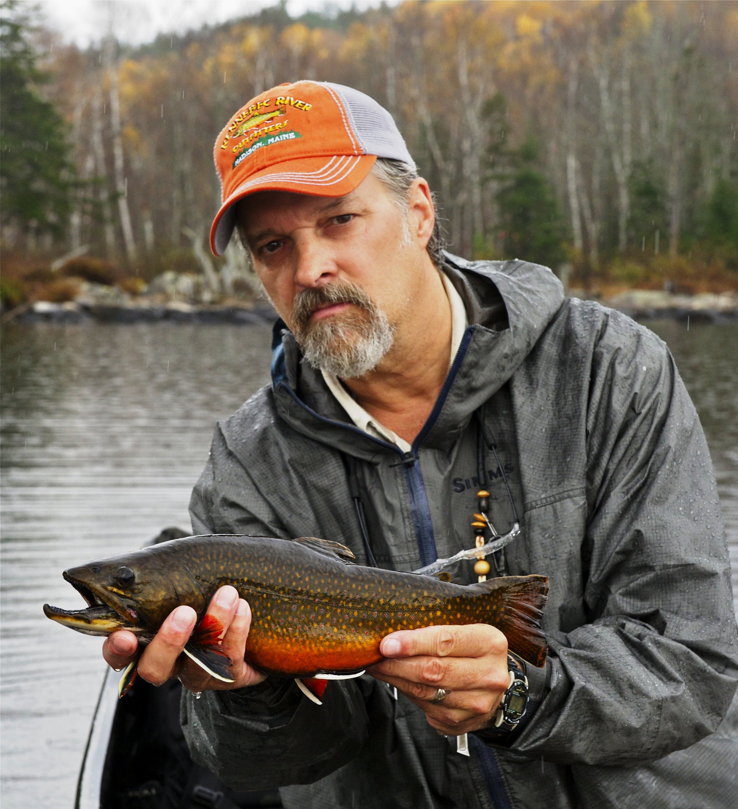 Pond brook trout (Cecil Gray).jpg