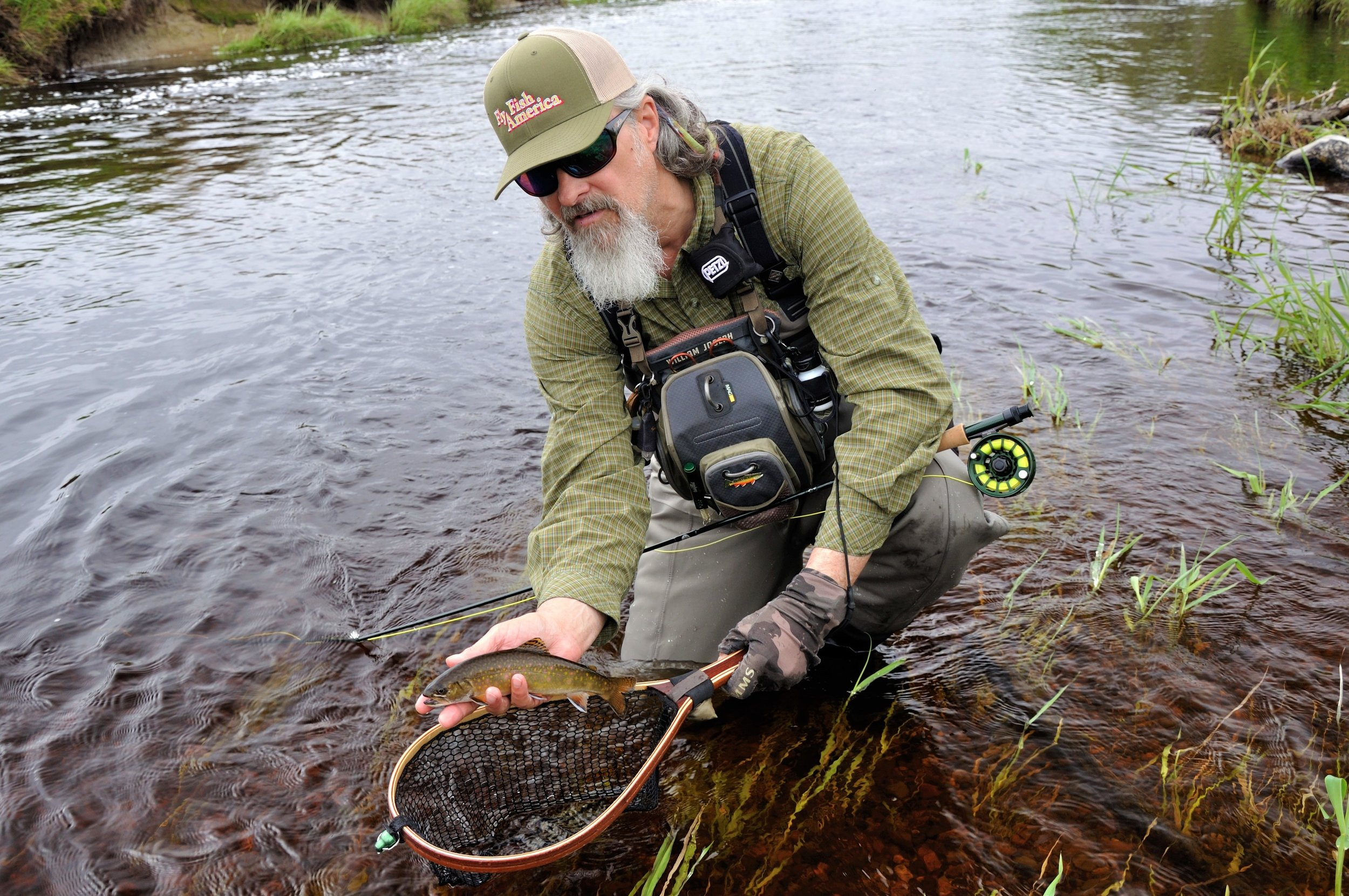 Sea-Run Brook Trout (Chandler River, Downeast ME).JPG