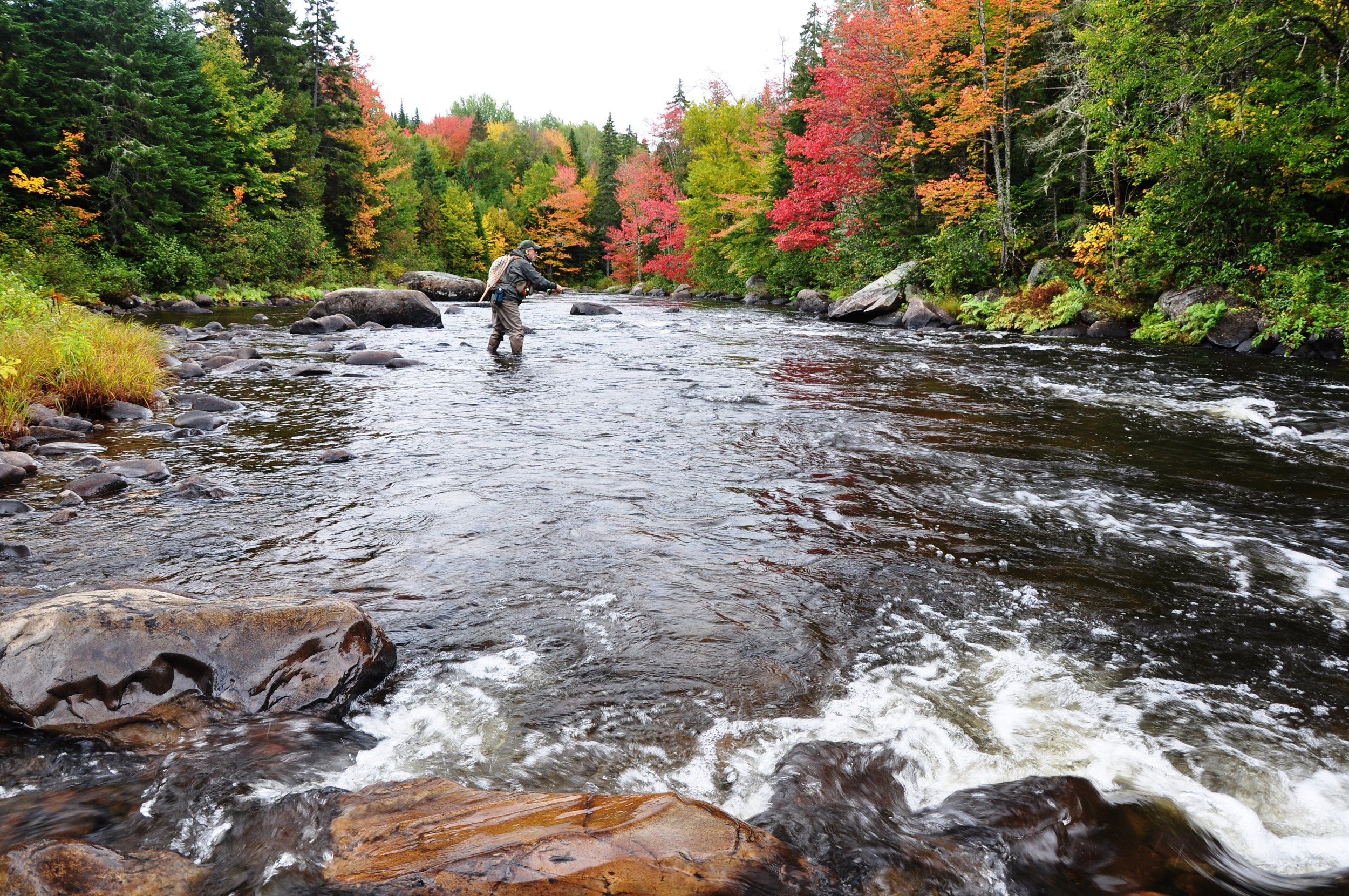 Author fishing the Kennebago River in the fall (Diana Mallard).JPG