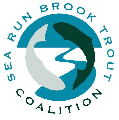 searunbrookie-org.jpg