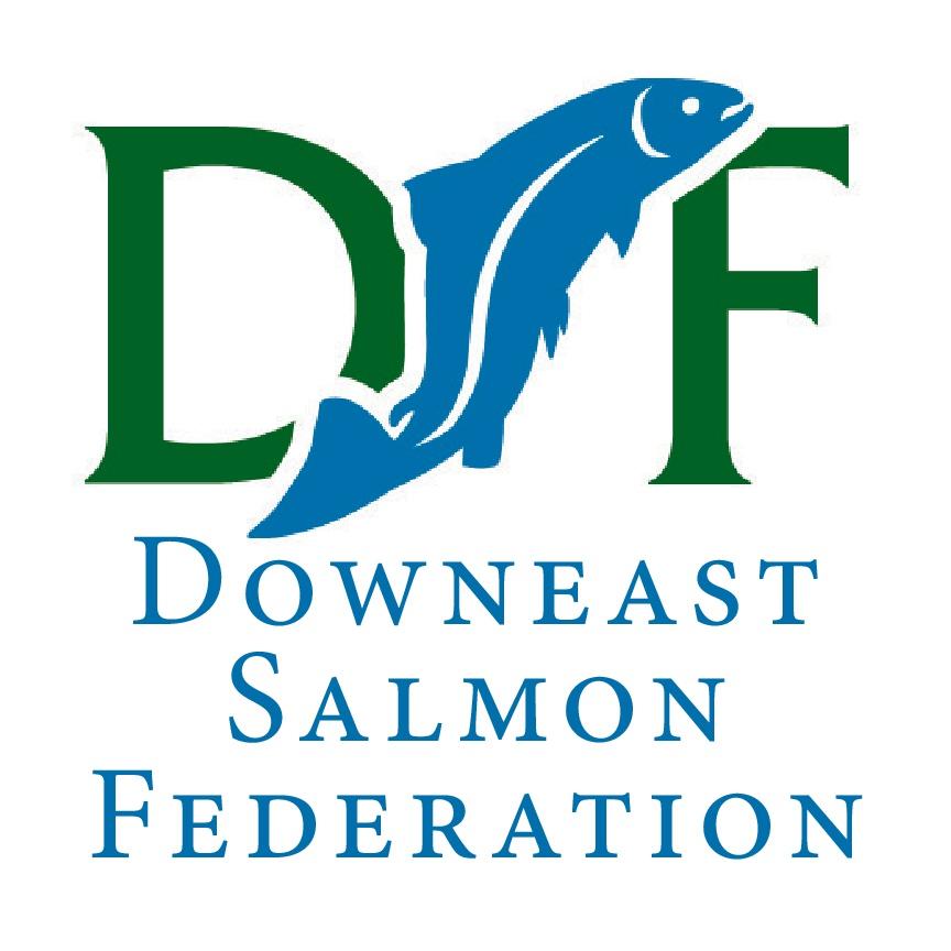 DSF logo.jpg