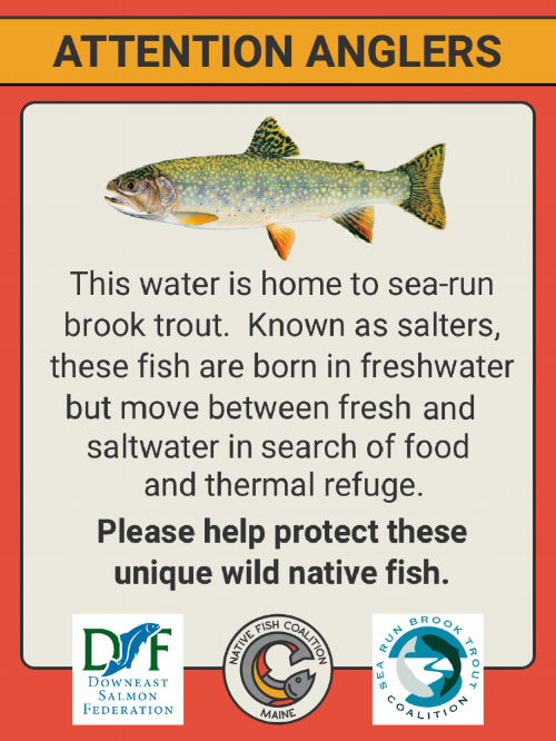 ME Sea-Run Brook Trout Sign.png
