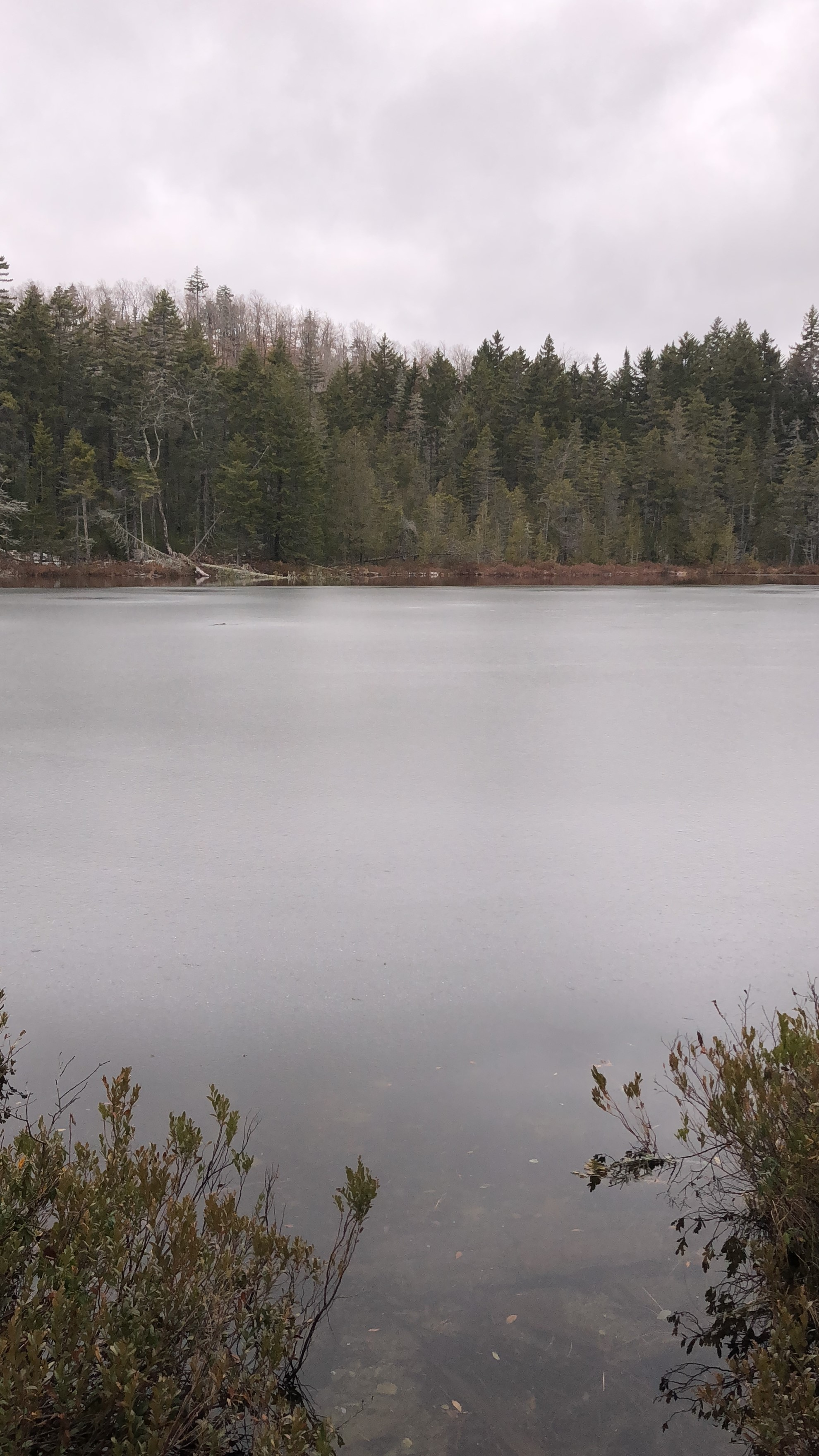 Hussey Pond - Fortier (3).JPG